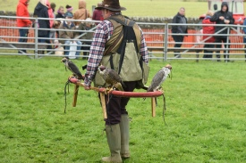 The birds get an airing prior to the lunchtime falconry display