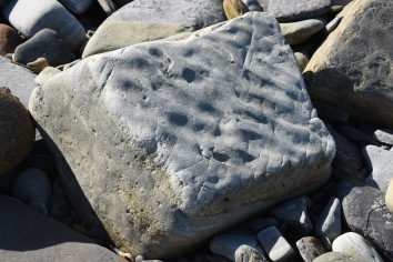 A block of sandstone apparently showing ripple features when originally laid-down-